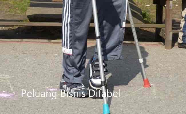 peluang bisnis disabilitas